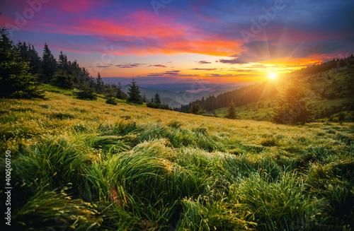 Obraz Attractive evening landscape illuminated by the sunset. Carpathian mountains, Ukraine, Europe. - fototapety do salonu