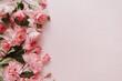 Leinwandbild Motiv Pink rose flowers bouquet on pink background. Flat lay, top view minimal floral composition.