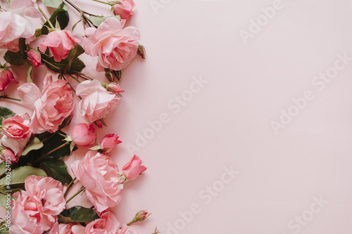 Pink rose flowers bouquet on pink background. Flat lay, top view minimal floral composition.