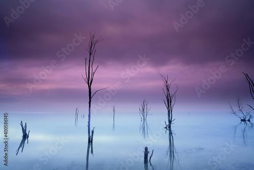mystische Stimmung am See