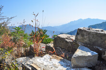 Unplastered, Crumbling Bricks And Red Grass Growing On The Great Wall Of China Near Beijing. The View Goes Into The Surrounding Landscape And Forests. The Horizon Is In The Blue Haze.