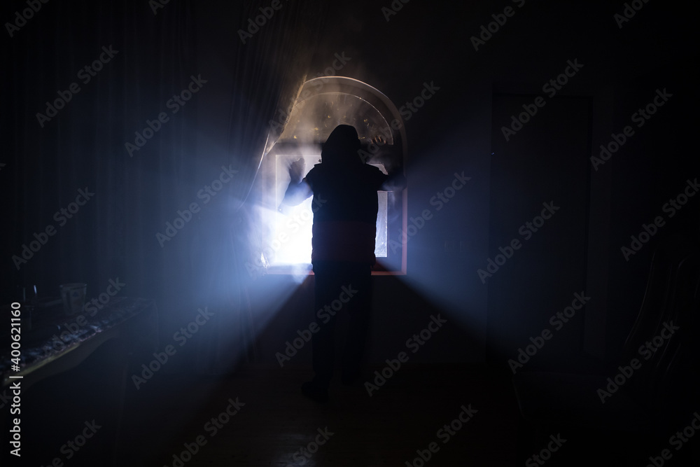Fototapeta Silhouette of an unknown shadow figure on a door through a closed glass door. The silhouette of a human in front of a window at night.