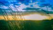 Puesta de sol cálido y frío tono verde