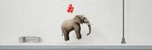 Rote Luftballons Heben Einen Schweren Elefanten