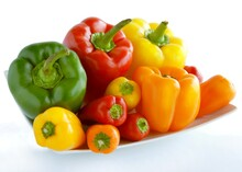 Multicolor Sweet Peppers For Eating,cooking Or As Frozen Preserve