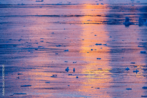 Canvas Print Reflection of a sunset sky in water with ripples in Antarctica