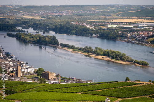 Cuadros en Lienzo view on hillside vineyards along the Rhine River and the fulder aue island in th