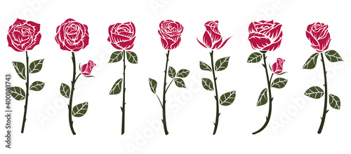 Set of red roses flower in minimalistic hand drawn style. Collection color art elements isolated on white background. Vector illustration.