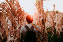 Man With Backpack Walking In Agricultural Field