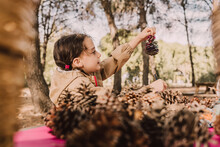 Cute Girl Looking At Pine Cone In Park