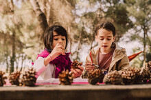 Cute Sisters Decorating Pine Cones With Watercolor Painting At Table In Park