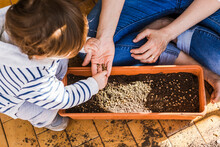 Boy Helping Mother While Planting Seed In Pot At Balcony