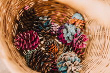 Colorful Pine Cones In Wicker Basket At Park