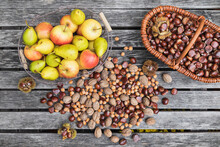 Garden Table Filled With Autumn Harvest Of Nuts And Fruits