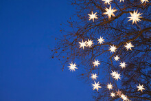Tree Branches Decorated With Star Shaped Christmas Lights Glowing Outdoors At Night