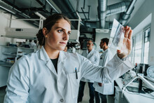 Young Woman Examining Human Brain Slide While Standing With Coworker In Background At Laboratory