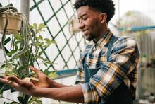 Smiling Male Botanist Examining Plant Leaves At Garden Center