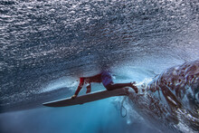 Male Surfer With Surfboard In Sea