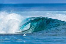 Ocean Wave Splashing Water At Huraa Island, Maldives