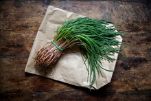 Bundle Of Fresh Agretti