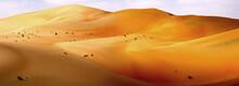 The Dubai Desert, Dubai, United Arab Emirates, Middle East