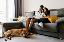 Couple Using Laptops On Sofa Near Dog At Home