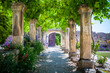 The lavender garden of the old abbey of Abbaye de Saint-Hilaire in Provence, France