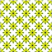 Blackeyed Susans Flower Pattern.