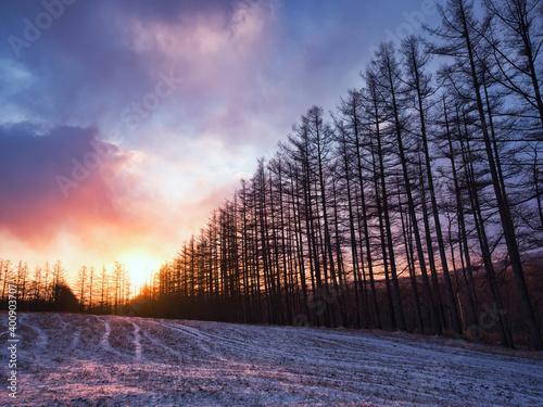 Foto 冬の早朝の空