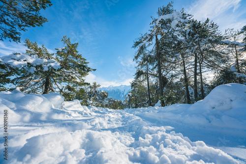 Obraz na plátně Winter walking path through snow along evergreen trees in Austrian Alps at Miemi
