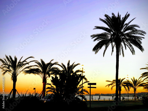 фотография SUNSET CANNES COTE D'AZUR FRANCE