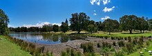 Beautiful View Of A Pond With Lily Pad In The Water And Tall Trees And Deep Blue Sky In The Background, Centennial Park, Sydney, New South Wales, Australia