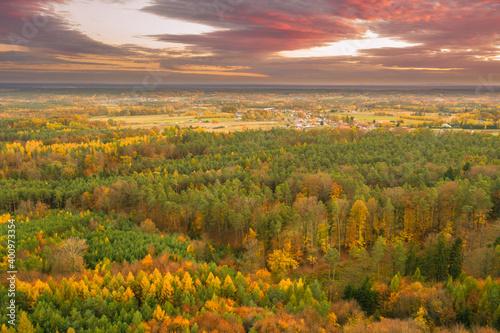 Obraz Wieczorne, zachmurzone niebo nad rozległą, leśną równiną. - fototapety do salonu