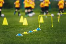 Football Training Venue. Grass Training Pitch. Players On Soccer Training. European Soccer Field