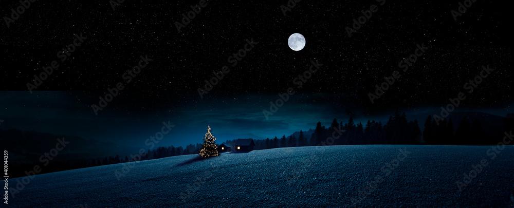 Fototapeta Weihanchtsbaum im Winter in verscheiter Landschaft