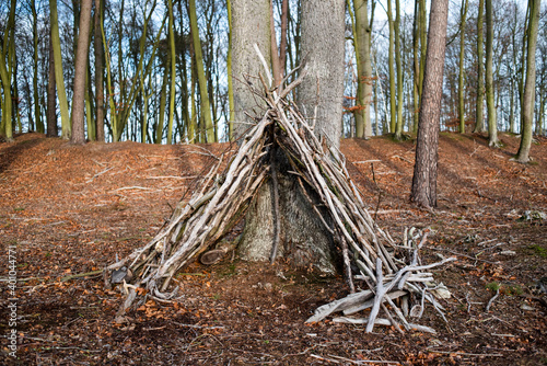 Fotografie, Tablou A hut made of poles in the forest.