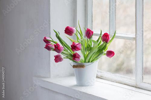 Fototapeta red tulips on old white windowsill obraz