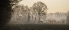 Landscape With Alone Old Farm House On Foggy Meadow In The Morning