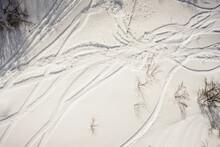 Rastros Na Neve