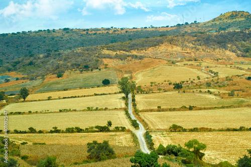 Fotografering camino siembra