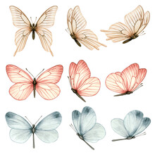 Beautiful Watercolor Butterfly Collection In Different Positions