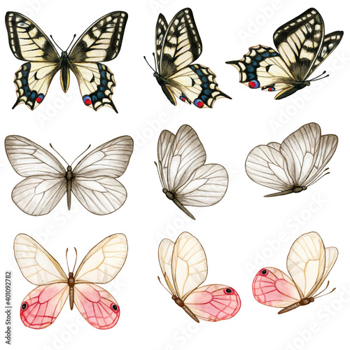 Photo Beautiful watercolor butterfly collection in different positions