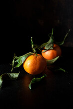 Tangerines Over Black Background