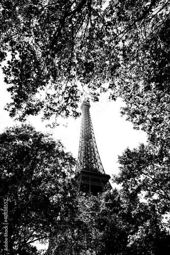 Fototapeta Eiffel tower in Champ-de-Mars garden obraz