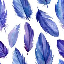 Bird Feathers, Seamless Pattern, Watercolor Illustration