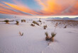 canvas print picture White sands