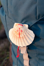 Colorful Ornamental Scallop Shell Of Santiage De Compostela Route With Ribbed Surface And Red Lace Hanging On Rucksack
