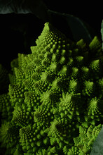 Macro Of Romanesco Broccoli Cabbage On Black Background