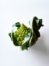 Romanesco Broccoli Cabbage On White Background