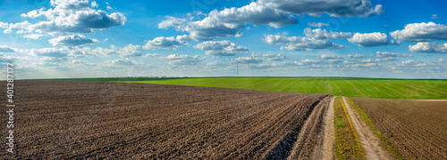 Photo plowed field and grren fresh wheat dirt road in spring, beautiful blue sky with